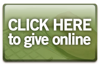 GiveOnline RedirectButton